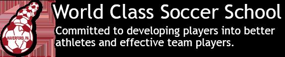 World Class Soccer School